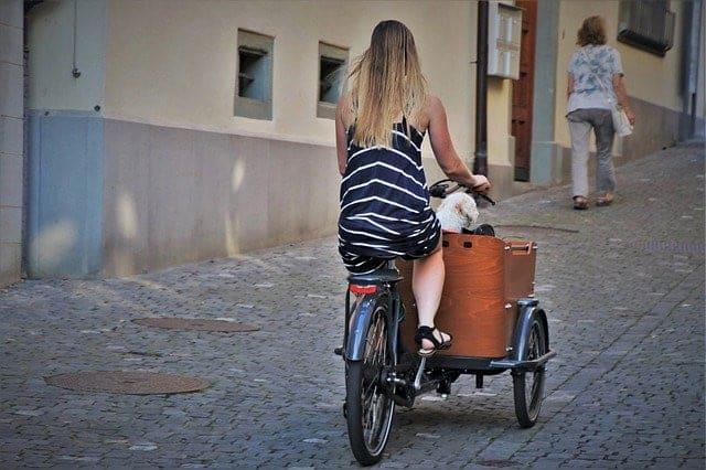 velo cargo electrique marron avec une femme